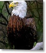 Eagle In The Night Metal Print