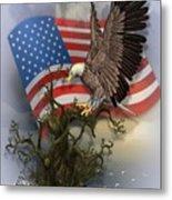 Eagle Lands Metal Print