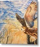 Eagle Owl Metal Print