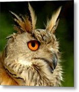 Eagle Owl Metal Print by Jacky Gerritsen