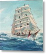 Sailing Eagle Metal Print