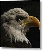 Eagle Profile 3 Metal Print