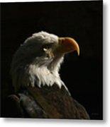 Eagle Profile 4 Metal Print