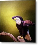 Eagle Ready For Take Off Metal Print