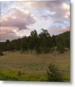 Eagle Rock Estes Park Colorado Metal Print