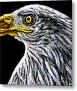 Eagle - Sa96 Metal Print