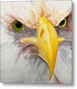 Eagle Stare Metal Print