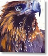 Eagle's Head Metal Print