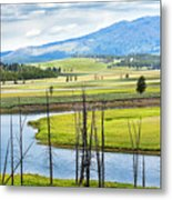 Eagles View, Hayden Valley, Yellowstone Metal Print