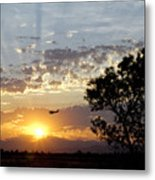 Early Flying Lesson Metal Print