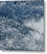 Early Morning After A Snowfall Metal Print