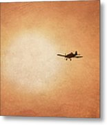Early Morning Flight Metal Print
