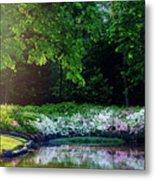 Early Morning Light At The Azalea Pond Metal Print