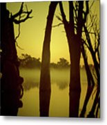 Early Morning Mist At The River Metal Print