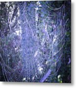 Early Morning Pearls Dew Kissed Spider Web Metal Print