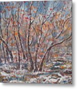 Early Snow. Metal Print