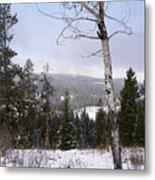 Early Snows In The Rockies Metal Print