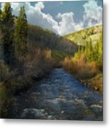 Early Spring Delores River Metal Print