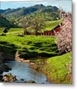 Early Spring In The Valley Metal Print