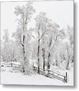 Early Spring Snow Metal Print