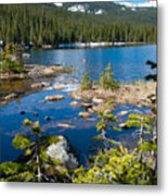 Early Summer At Finch Lake Metal Print