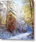Early Winter's Walk Metal Print