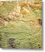 Earth Art 9509 Metal Print