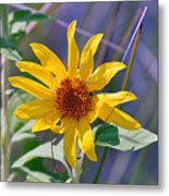 Earth Day Wild Flower  Metal Print