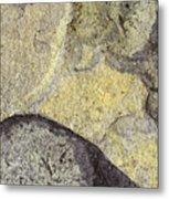 Earth Portrait 010 Metal Print