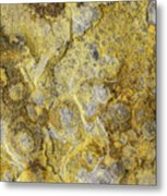 Earth Portrait 013 Metal Print