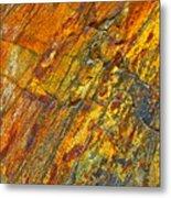 Earths Palette Metal Print