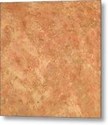 Earthtone Metal Print