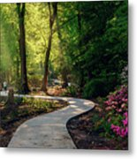 Earyl Morning Walk Through Honor Heights Park Metal Print