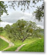 East Ridge Trail -  Spring Metal Print