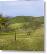 East Ridge Trail Barbed Wire Metal Print