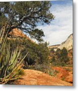 East Zion Afternoon Metal Print