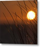 Easter Beach Part 4 Metal Print