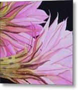 Easter Lily Cactus Flower Metal Print