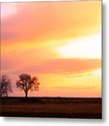 Easter Morning Sunrise Metal Print