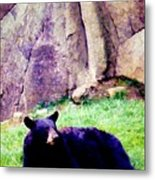 Eastern Black Bear Metal Print