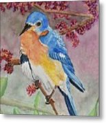 Eastern Bluebird Vertical  Metal Print