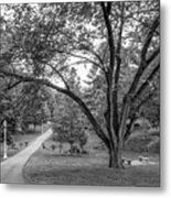Eastern Kentucky University The Ravine Metal Print