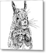 Eating Squirrel Metal Print