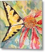 Echinacea Butterfly Metal Print