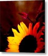 Eclipse Metal Print