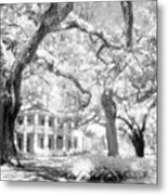 Eden Plantation A Florida State Park Metal Print