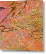 Edition 1 Double Wow Metal Print