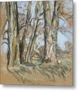 Edouard Vuillard Cuiseaux 1868-1940 La Baule The Park In Clayes. 1932-1938. Metal Print