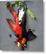 Eduard Quitton  Still Life With Green Ribbon, Fly, And Four American Birds Metal Print