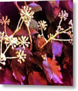 Efeu Ivy Vines Pink Metal Print